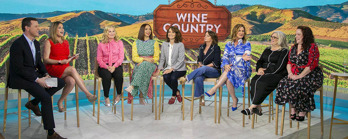 The cast of 'Wine Country' appear on the Today Show